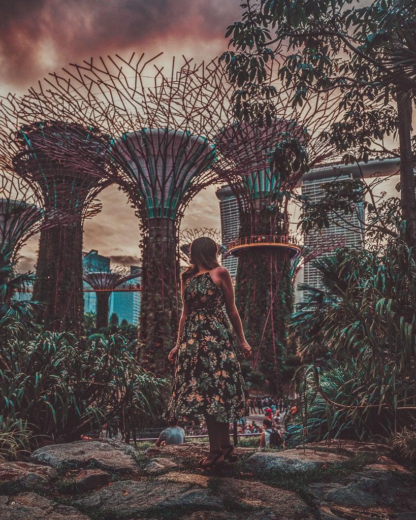 Garden Rhapsody