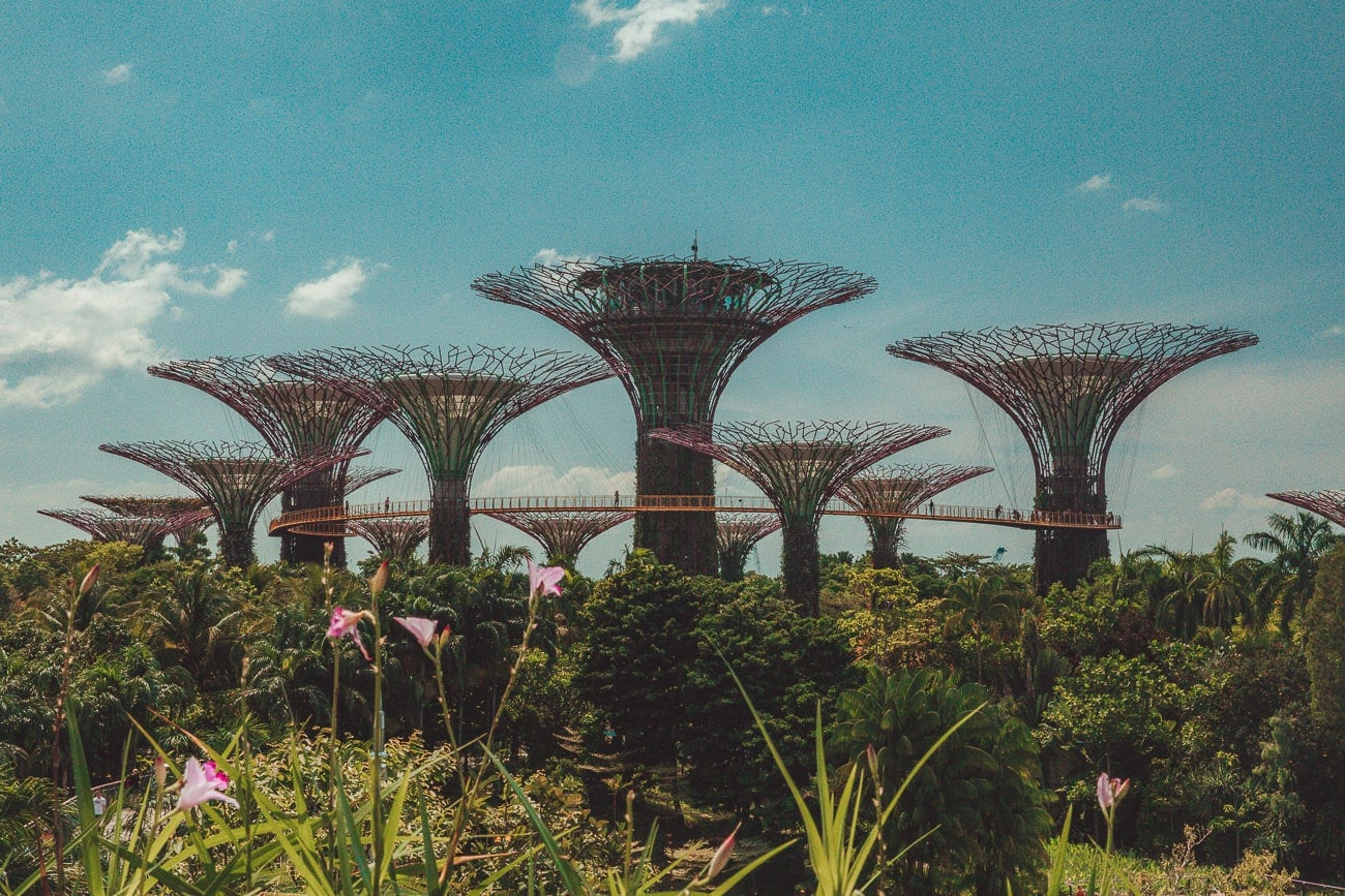 10 Best Things To Do in Singapore For First Time Visitors