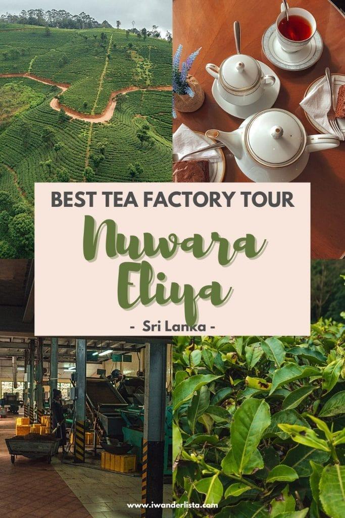 Nuwara Eliya TEa Factory Damro