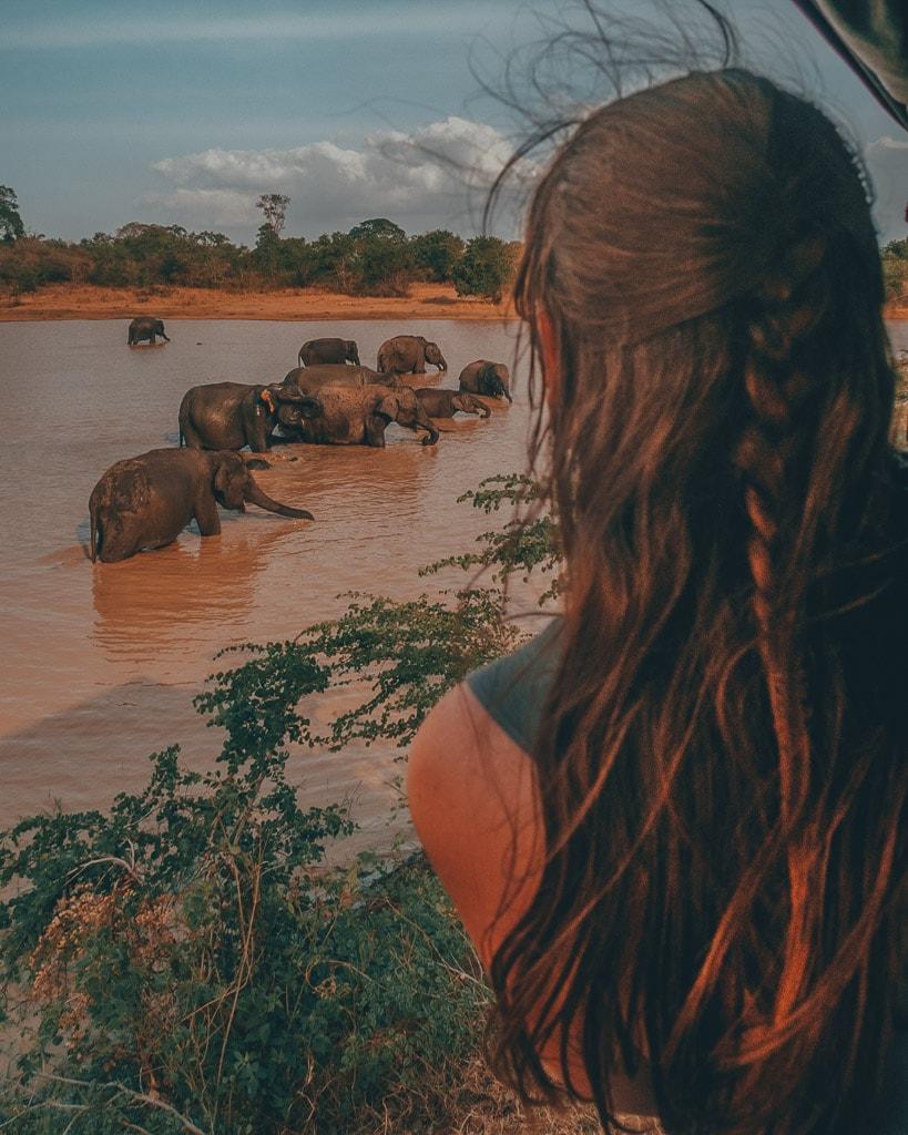 Udawalawe safari