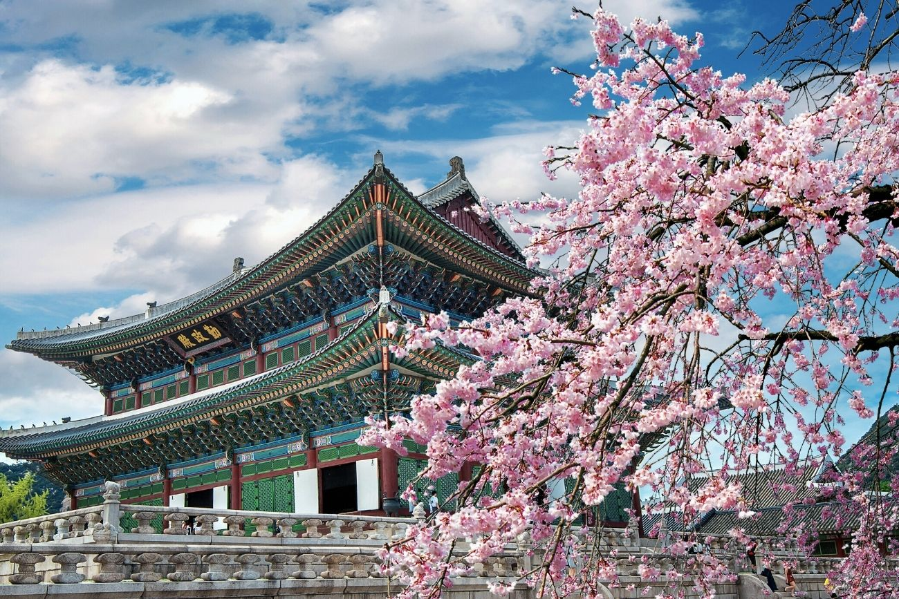 Spring in Korea – 15 Best Places to See Korea in Spring